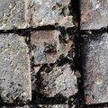 Bricks Floor 002
