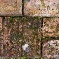 Bricks Floor 001