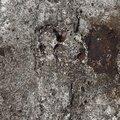 Concrete Damaged 025
