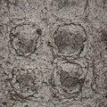 Concrete Dirty 017