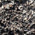 Debris Concrete 007