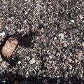 Debris Seaside 013