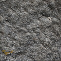 Rock Stone 023