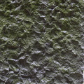 Rock Stone 038