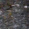 Wall Stone 028