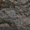 Wall Stone 010
