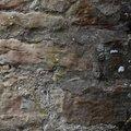 Wall Stone 011