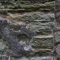 Wall Stone 0017