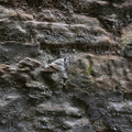Wall Stone 020