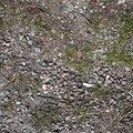 Soil Gravel 015