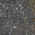 Soil Gravel 019