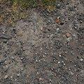 Soil Gravel 020