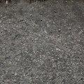 Soil Gravel 026