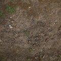 Soil Stoned 003