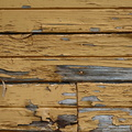 Wood Planks Old 002