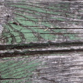 Wood Planks Old 012