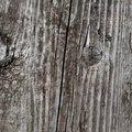 Wood Planks 011