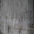 Wood Planks 013
