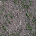 Soil 005