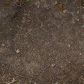 Soil 007