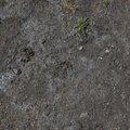Soil 009