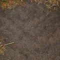 Soil 010