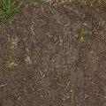 Soil 013