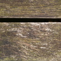 Wood Planks Old 035