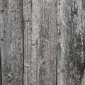 Wood Planks Old 044