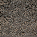 Road Asphalt Rough 005