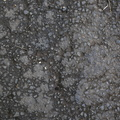 Road Asphalt Rough 012