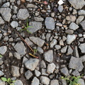 Soil Gravel 032
