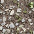 Soil Gravel 033