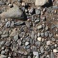 Soil Gravel 031