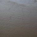 Sea Mud 002