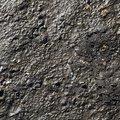 Sea Mud 005