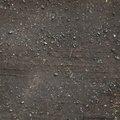 Tyre Tracks 004
