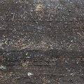 Tyre Tracks 013