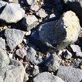 Sea Pebble 027
