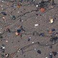 Sea Sand 003