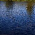 Water Freshwater 012