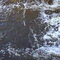 Water Freshwater 004