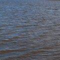 Water Sea 019