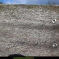 Wood Planks 016