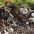 Debris Garbage 002
