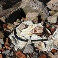 Debris Garbage 004