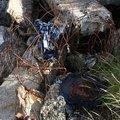 Debris Garbage 007