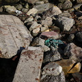 Debris Garbage 009