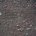 Tyre Tracks 032
