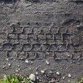 Tyre Tracks 033